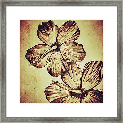 Flower Play 3 Framed Print