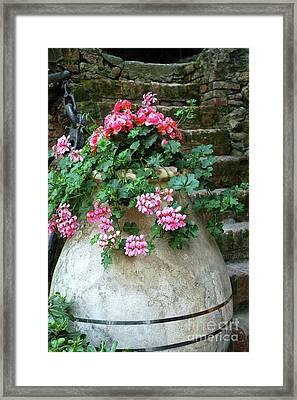 Framed Print featuring the photograph Flower Pot 8 by Allen Beatty