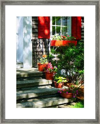 Flower Pots And Red Shutters Framed Print by Susan Savad