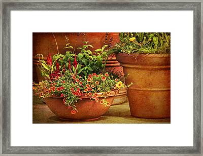 Flower Pots Framed Print