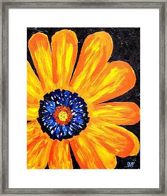 Flower Power 2 Framed Print by Paul Anderson