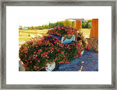 Flower Power Framed Print by Marv Russell