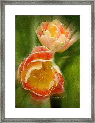 Flower Power Revisited Framed Print by Terri Harper