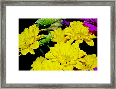 Flower Power Framed Print by Victoria Clark