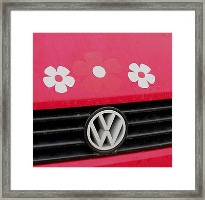 Flower Power Framed Print by Will Boutin Photos