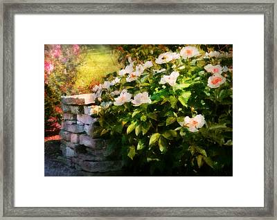 Flower - Rose - By A Wall  Framed Print by Mike Savad