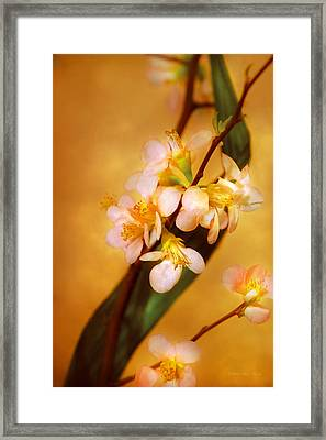 Flower - Sakura - A Touch Of Spring Framed Print by Mike Savad