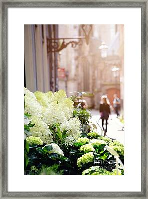 Flower Stall In Sunlight Framed Print by Jane Rix