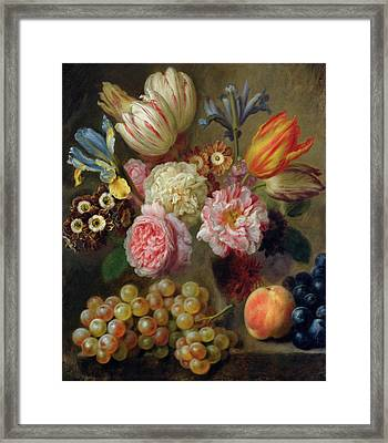 Flower Study  Framed Print by Balthasar Denner