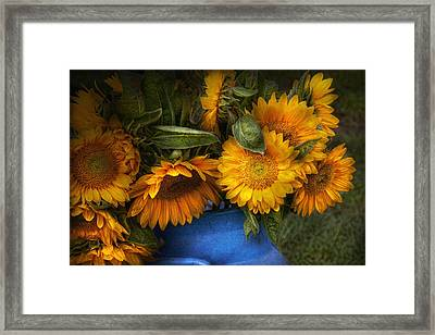 Flower - Sunflower - The Suns Have Risen  Framed Print by Mike Savad