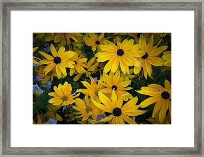 Flower Sunrise Framed Print by Rockin' Media