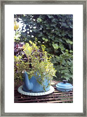 Flower Teapot Framed Print