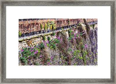 Flower Wall Along The Arno River- Florence Italy Framed Print by Jon Berghoff