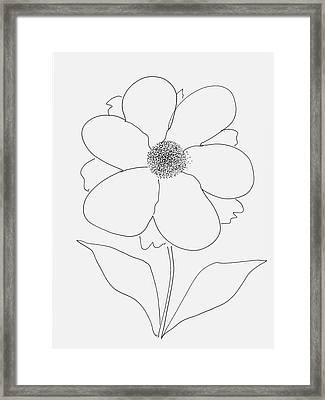 Flower With Pollen Framed Print