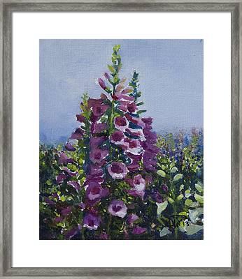 Flower_03 Framed Print by Helal Uddin