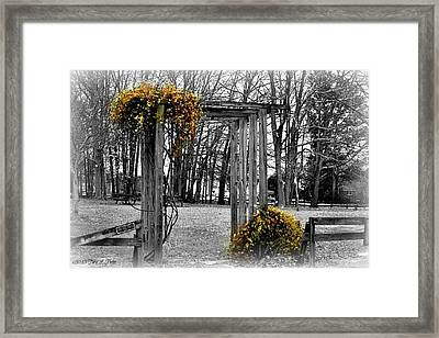Framed Print featuring the photograph Flowering Archway by Tara Potts