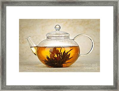 Flowering Blooming Tea Framed Print by Elena Elisseeva