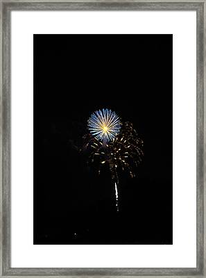 Flowering Burst Framed Print
