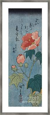 Flowering Poppies Tanzaku Framed Print by Ando Hiroshige