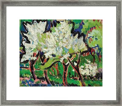 Flowering Trees Iv Framed Print by Ernst Ludwig Kirchner
