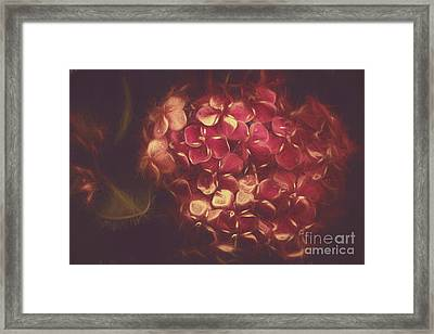 Flowering Unity In Collective Closeness Framed Print