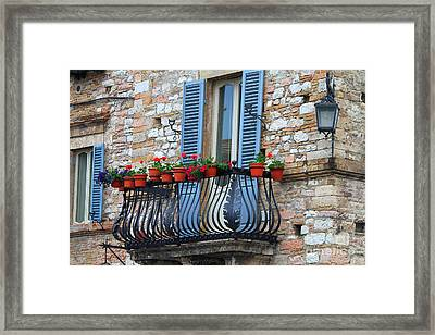 Flowers 3- Assisi Framed Print by Theresa Ramos-DuVon