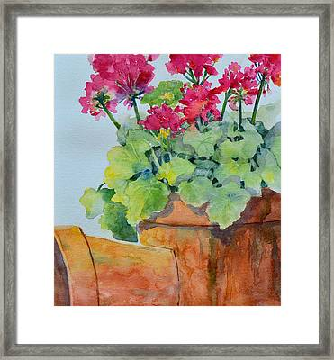 Flowers And Clay Pots Framed Print by Cynthia Roudebush
