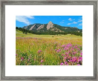 The Flatirons Colorado Framed Print by Dan Miller