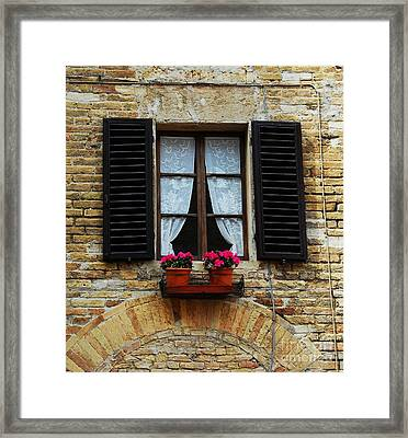 Flowers And Lace Framed Print by Mel Steinhauer