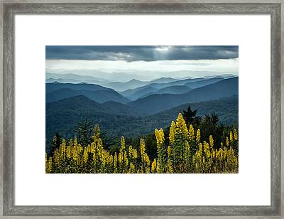 Flowers And Mountains Framed Print by Rob Travis