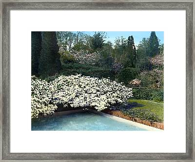 Flowers And Pool Framed Print by Terry Reynoldson
