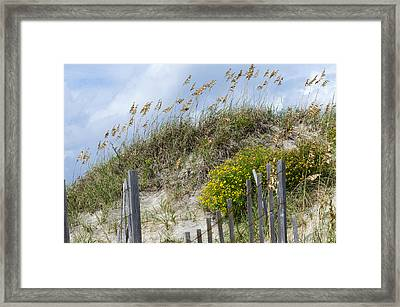 Framed Print featuring the photograph Flowers And Sea Oats by Gregg Southard