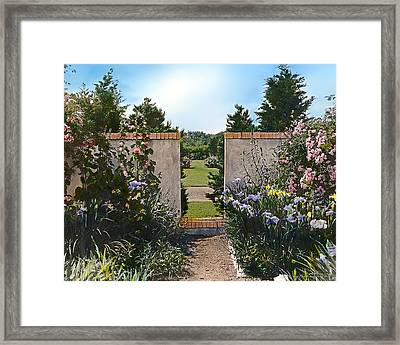 Flowers And Summer Sun Framed Print