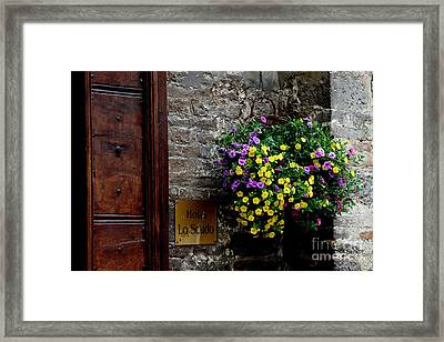 Framed Print featuring the photograph Flowers - Assisi by Theresa Ramos-DuVon