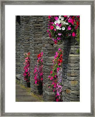 Flowers At Liscannor Rock Shop Framed Print