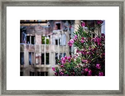 Flowers At Peace Park Framed Print by Gary Fossaceca