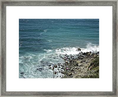 Flowers By The Seashore Framed Print by Carla Carson