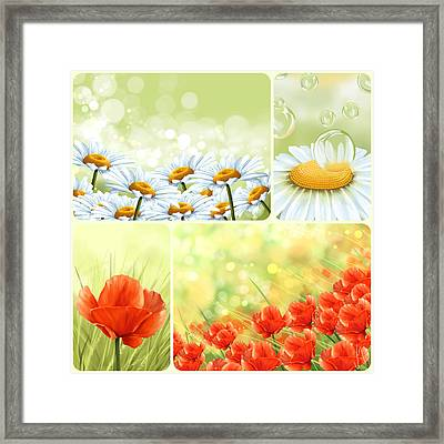 Flowers Collage Framed Print by Veronica Minozzi