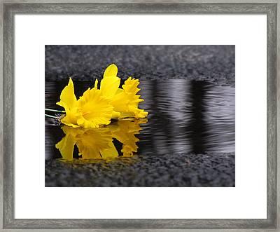 Flowers Come With Rain Framed Print by Freda Nichols