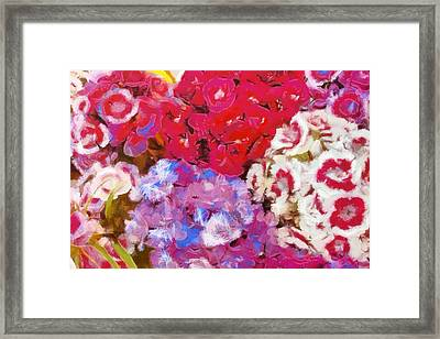 Flowers  Framed Print by Dan Sproul