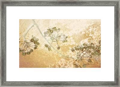 Flowers Delicate Buds  Framed Print