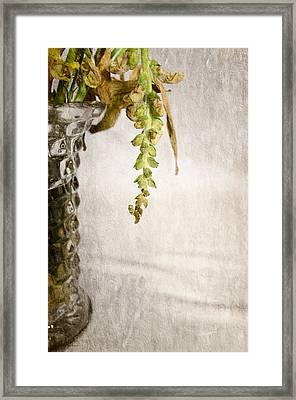 Flowers Falling Framed Print