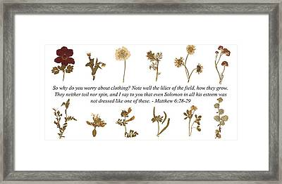 Flowers From The Holy Land Framed Print by S G