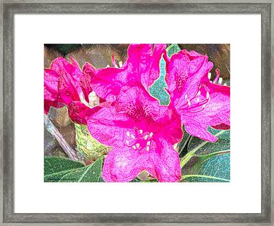 Flowers Full Of Life Framed Print by Aeabia A