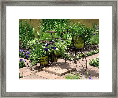 Flowers Home From The Market  Framed Print by Paul Cannon