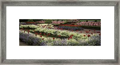 Flowers In A Garden, Butchart Gardens Framed Print