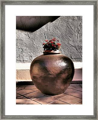 Flowers In A Pot Framed Print by Bill Grolz