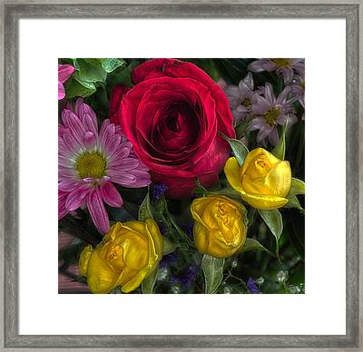 Flowers In Hdr Framed Print by Tom Climes
