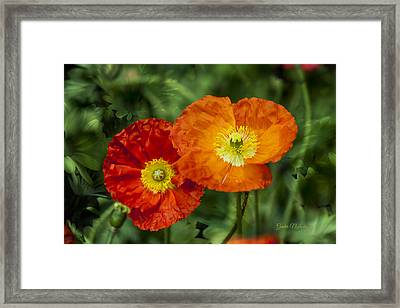 Framed Print featuring the photograph Flowers In Kodakchrome by Gunter Nezhoda