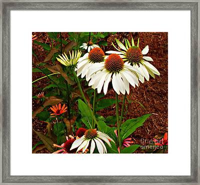 Flowers In Spring Framed Print